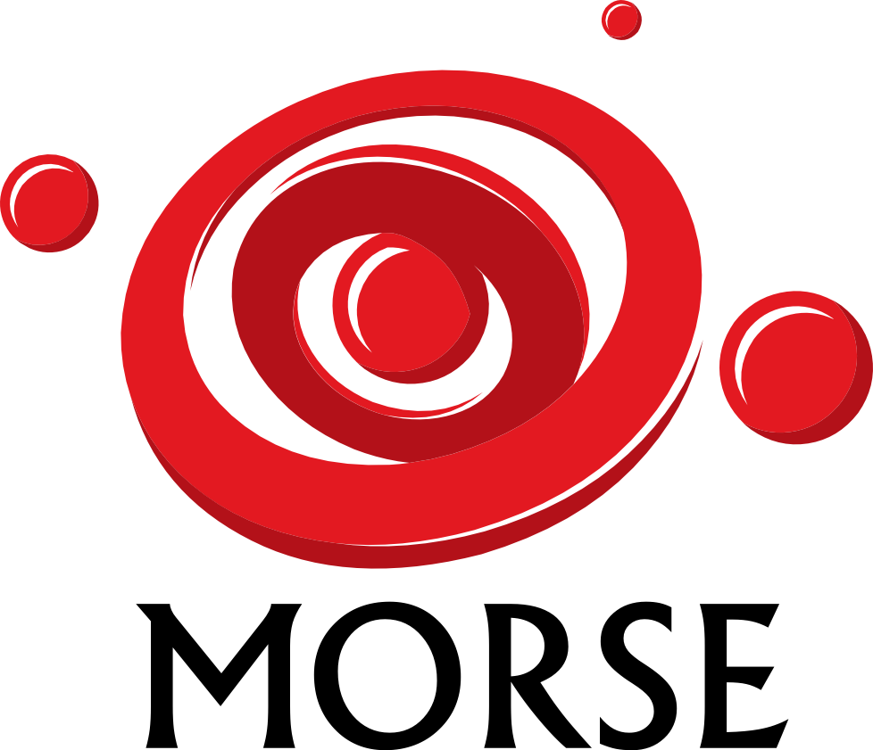 Morse: Mobile networks and Software Reliability Group